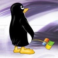 Tux, symbol Linuxu vyjadřuje svůj názor na Windows